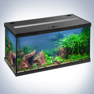 Аквариум Eheim Aquastar LED, 54л